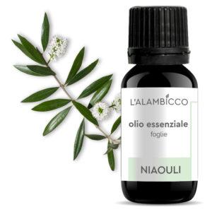 Olio Essenziale - Niaouli